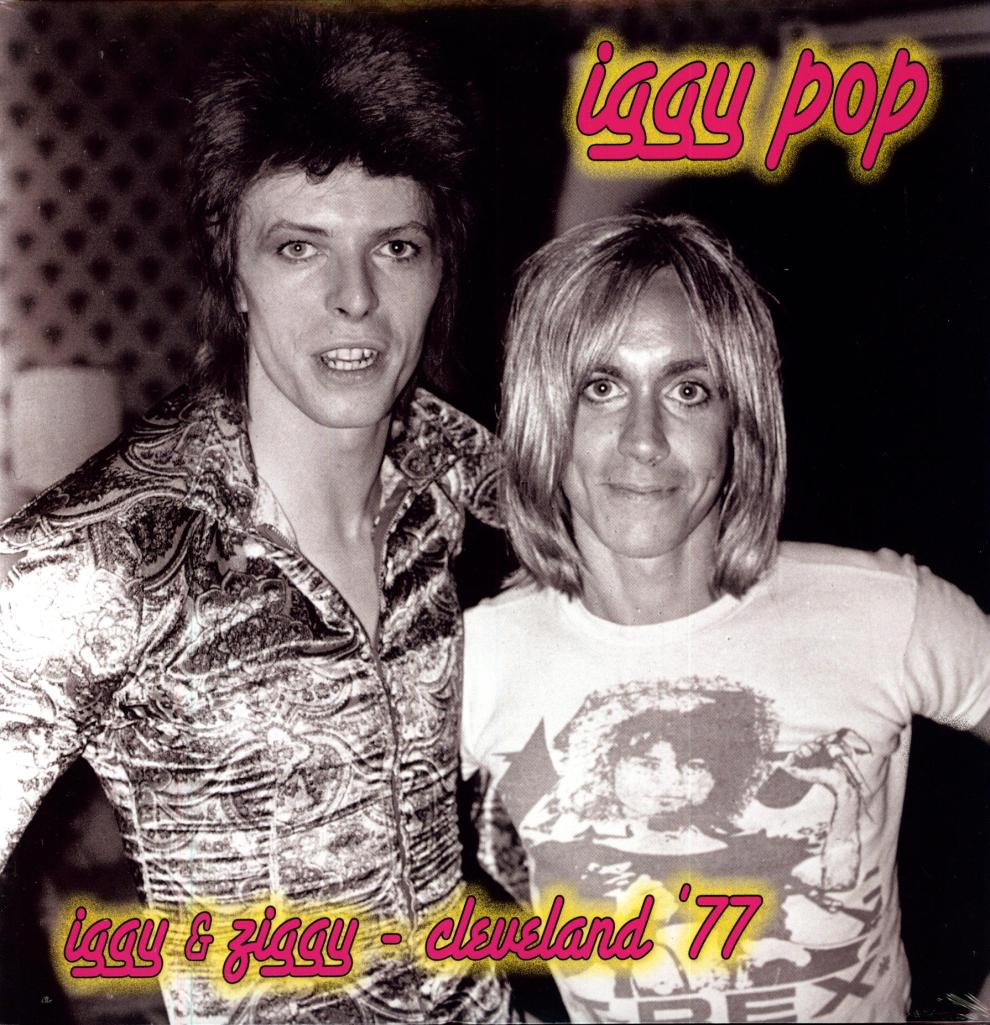iggy pop iggy & ziggy on Vinyl LP Records get it at What Cheer in Providence